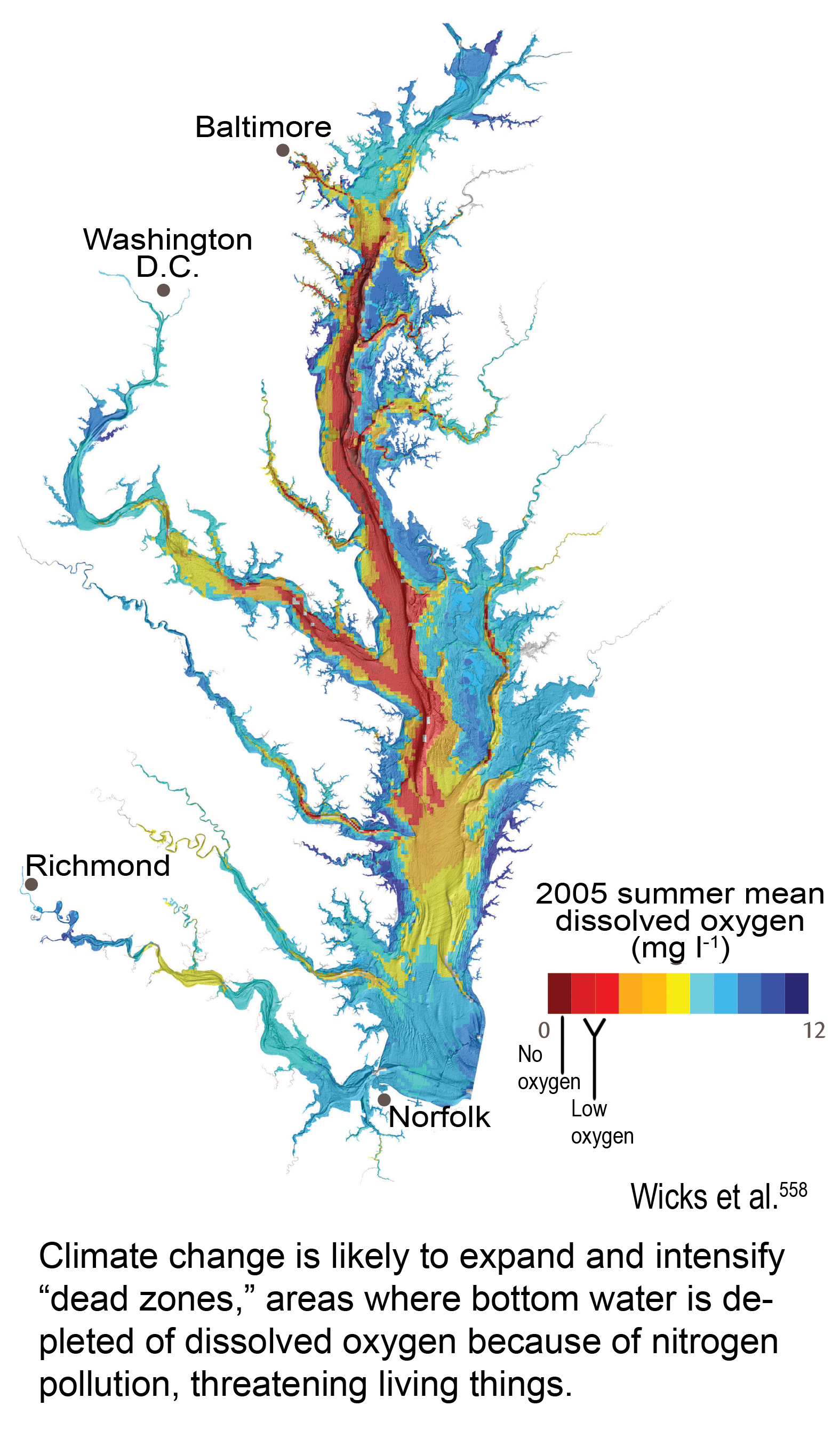 Dead Zones in the Chesapeake Bay Global Climate Change Impacts in