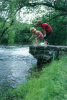Children jumping in a stream