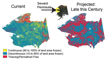 Changing Permafrost Distribution Moderate Warning Scenario
