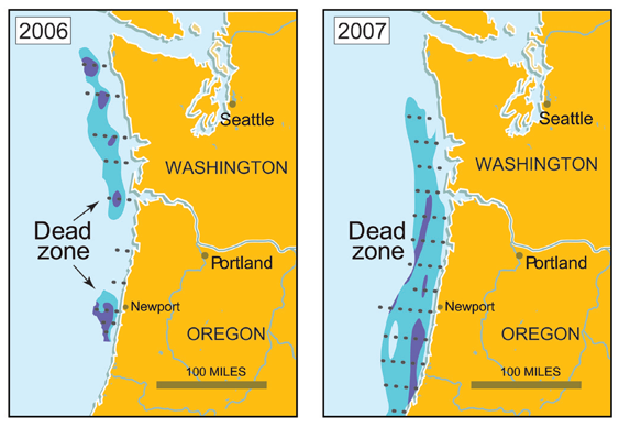 Pacific coast dead zones global climate change impacts in the pacific coast dead zones publicscrutiny Image collections