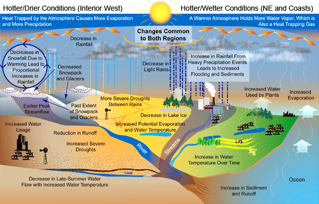 Projected Changes in the Water Cycle: The water cycle exhibits many changes as the Earth warms. Wet and dry areas respond differently.