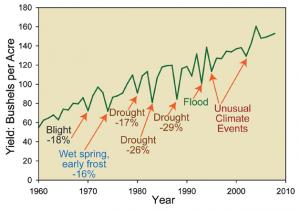 U.S. Corn Yields 1960 to 2008