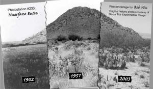 Desertification of Arid Grassland near Tucson, Arizona, 1902 to 2003